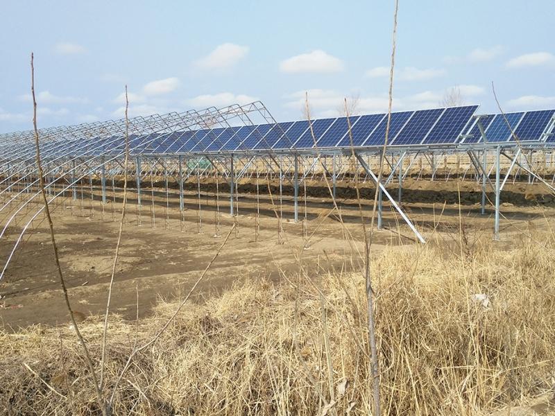 农光互补项目
